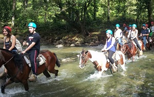 Paradise Management - HORSEBACK RIDING