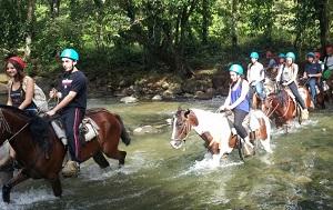Paradise Management - HORSEBACK RIDING