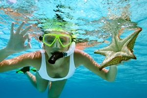Paradise Management -  SNORKELING AND DIVING